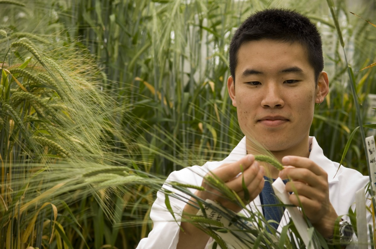5 global universities to study the Environment and Agriculture