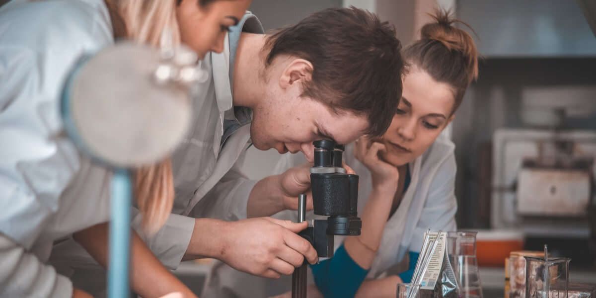 What do students gain from undergraduate research?