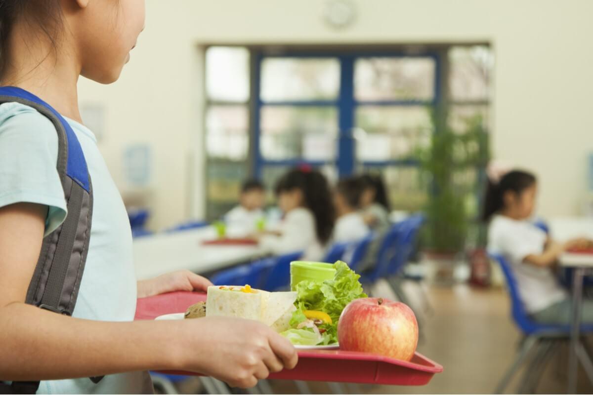 school lunch debt