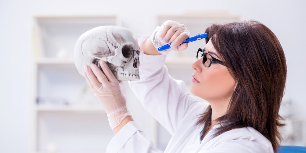 anthropology quiz