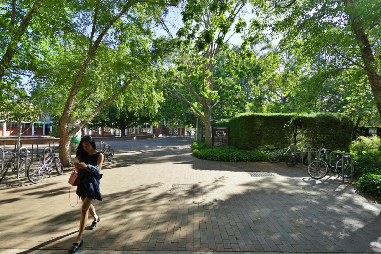When can international students return to Australia