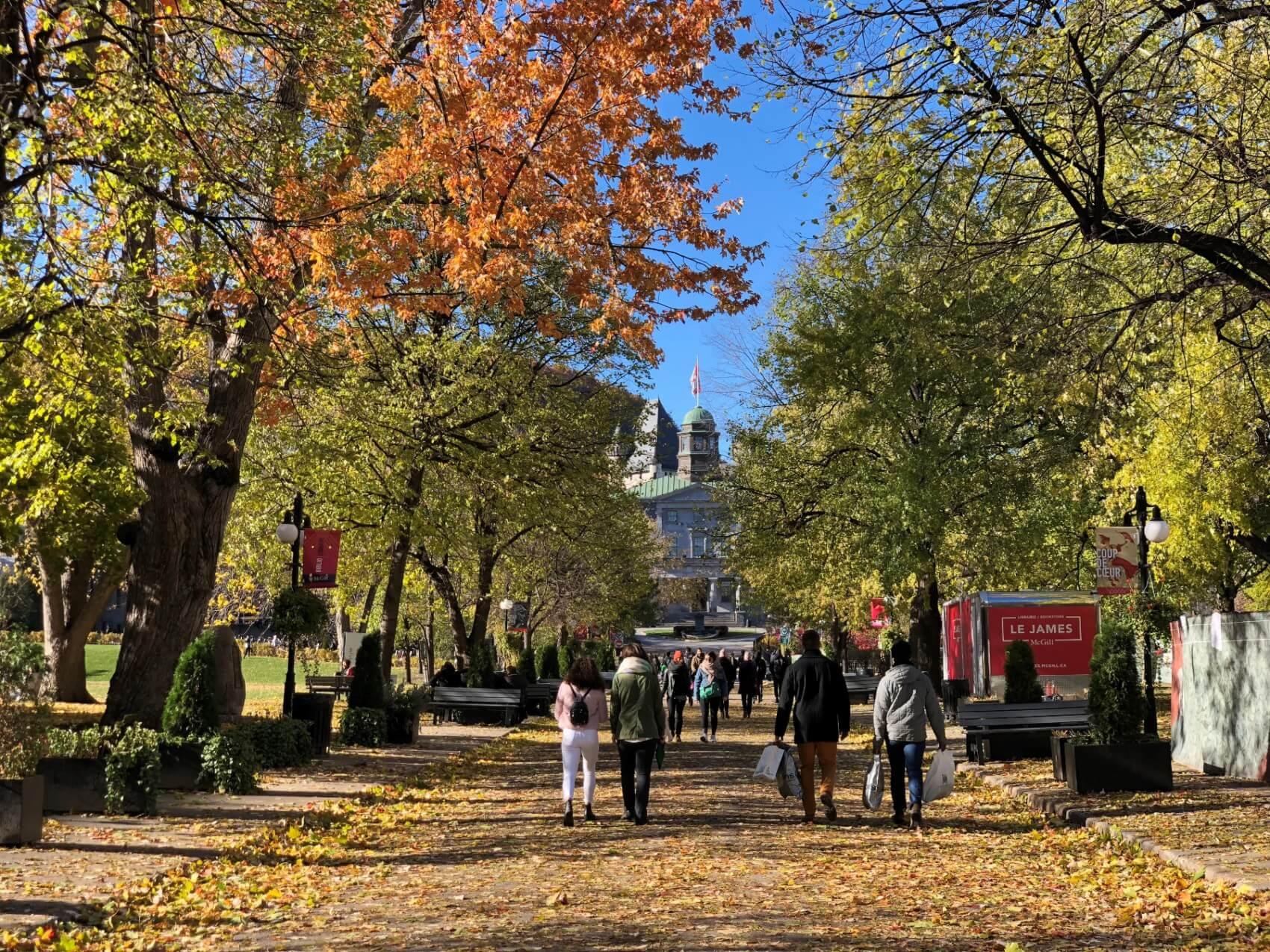 Canada reigns supreme as top study abroad destination: survey