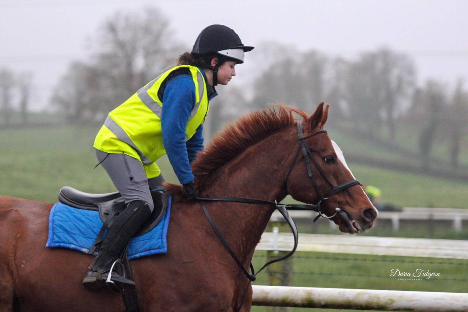 What it's like studying at the UK's top equine college