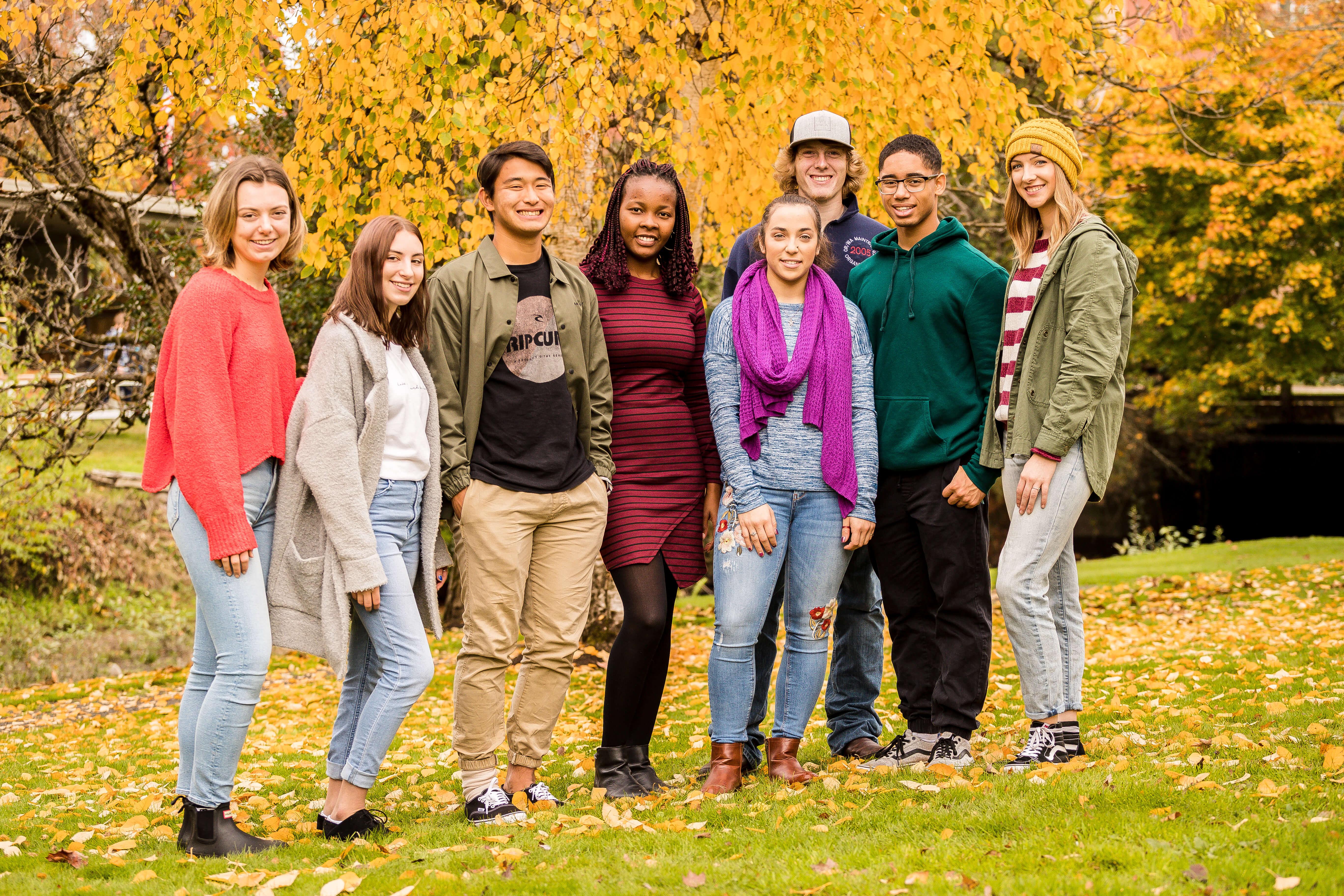 Bushnell University