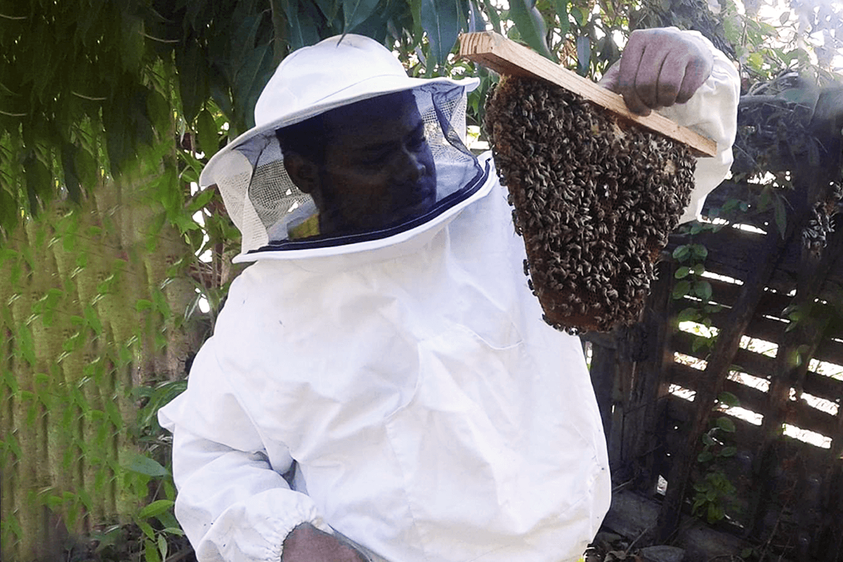 Meet the Jamaican beekeeper embarking on a quest to Wales